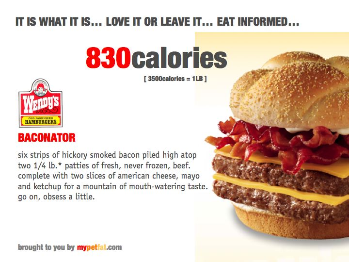 Wendy s single burger nutrition